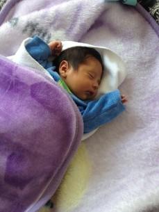 bebilon comfort